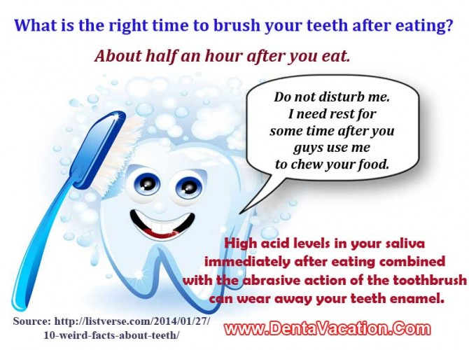 Interesting Dental Fact - Right Time to Brush Teeth